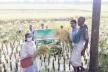 চন্দনাইশে ব্রি-৬৭ ধানের বাম্পার ফলন, দাম নিয়ে শঙ্কা