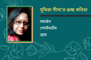 সুফিয়া শীলা'র গুচ্ছ কবিতা