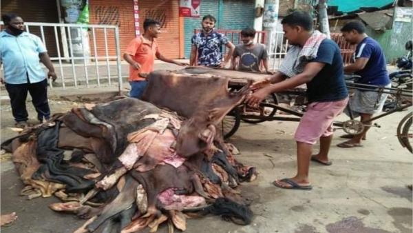 অস্তিত্ব সংকটে চট্টগ্রামে ৭৩ বছরে চামড়ার ব্যবসা