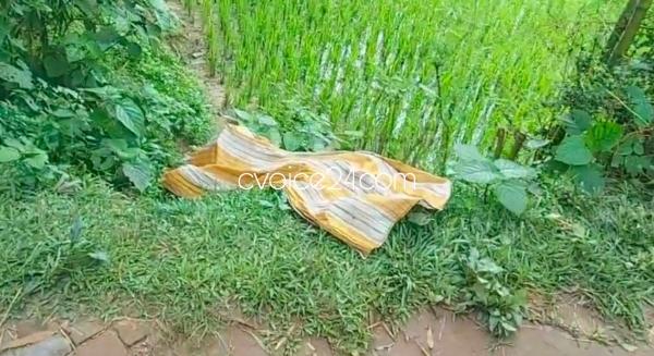 হাটহাজারীতে নারিকেল ব্যবসায়ী খুন, বিলে পড়েছিল লাশ
