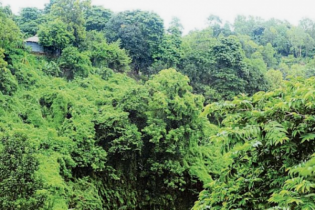 কক্সবাজারে প্রশাসন একাডেমির ৭০০ একর জমির লিজ স্থগিত